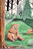 Bär auf einer Lichtung